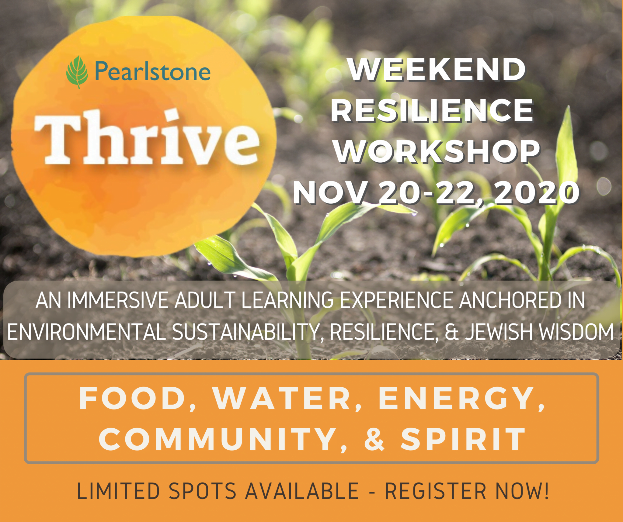 thrive workshop at pearlstone